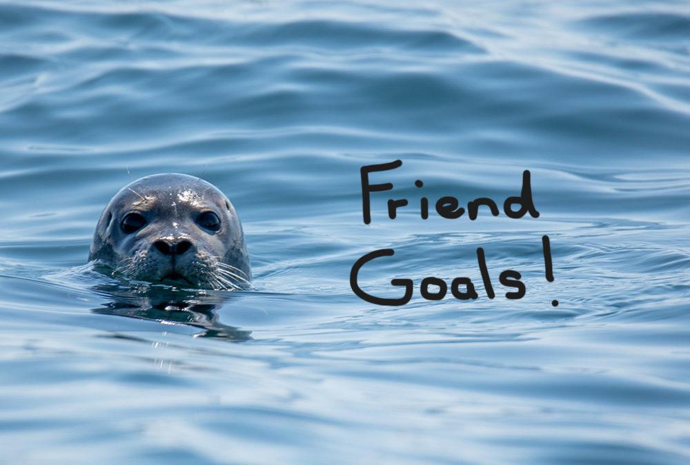 Swim Goals