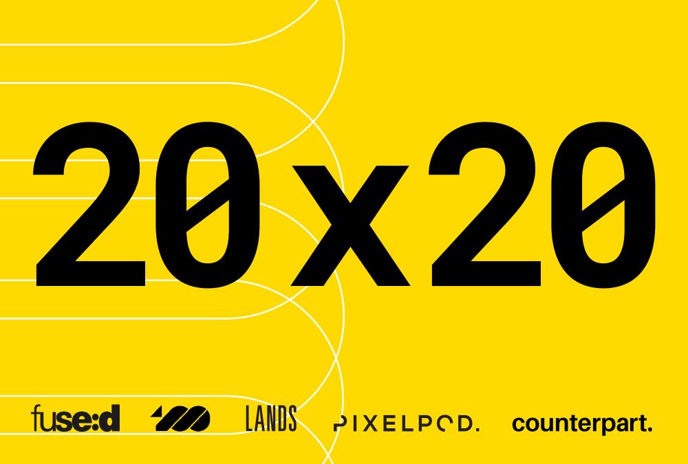 20×20